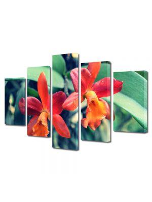 Set Tablouri Multicanvas 5 Piese Flori Orhidee portocalii