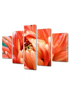 Set Tablouri Multicanvas 5 Piese Flori Pasiune portocalie