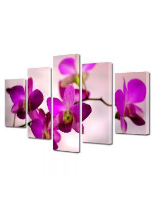 Set Tablouri Multicanvas 5 Piese Flori Culoare de orhidee