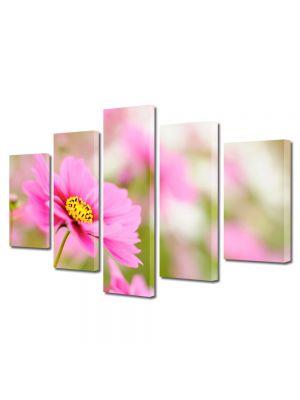 Set Tablouri Multicanvas 5 Piese Flori Camp de flori violet