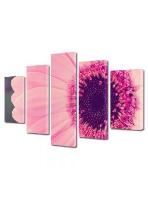 Set Tablouri Multicanvas 5 Piese Flori Gerbera roz
