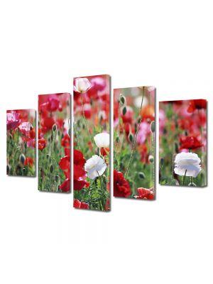 Set Tablouri Multicanvas 5 Piese Flori Camp de maci