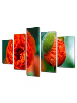 Set Tablouri Multicanvas 5 Piese Flori Mac