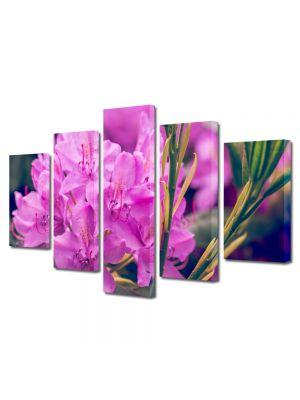 Set Tablouri Multicanvas 5 Piese Flori Rododendron violet