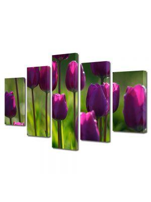 Set Tablouri Multicanvas 5 Piese Flori Lalele