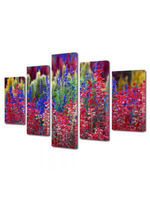 Set Tablouri Multicanvas 5 Piese Flori Flori curcubeu