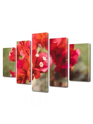 Set Tablouri Multicanvas 5 Piese Flori Flori rare