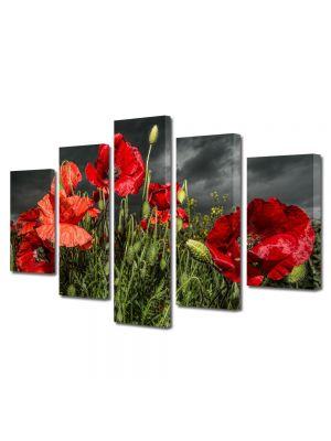 Set Tablouri Multicanvas 5 Piese Flori Maci inainte de furtuna