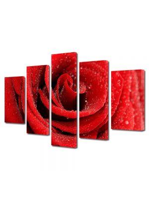 Set Tablouri Multicanvas 5 Piese Flori Trandafir cu bruma