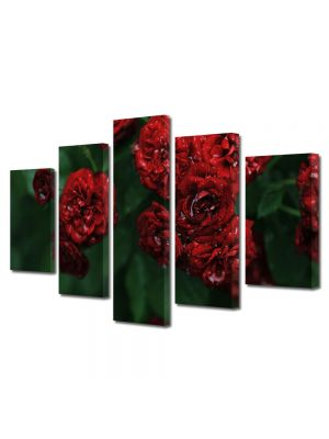 Set Tablouri Multicanvas 5 Piese Flori Florile dragostei