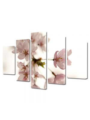Set Tablouri Multicanvas 5 Piese Flori Floare roz japoneza