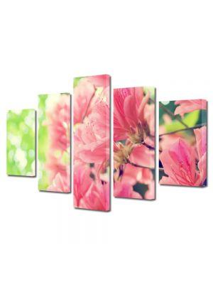 Set Tablouri Multicanvas 5 Piese Flori Flori de primavara frumoase