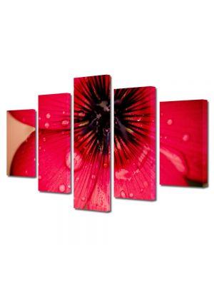 Set Tablouri Multicanvas 5 Piese Flori Floare caramizie