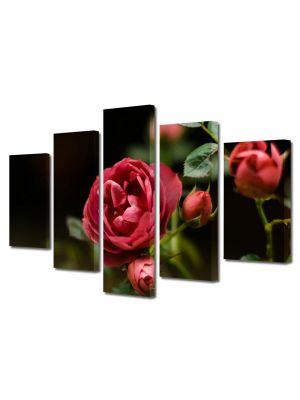 Set Tablouri Multicanvas 5 Piese Flori Muguri de trandafir