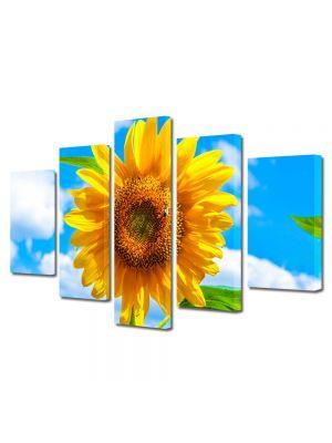 Set Tablouri Multicanvas 5 Piese Flori Sora soarelui