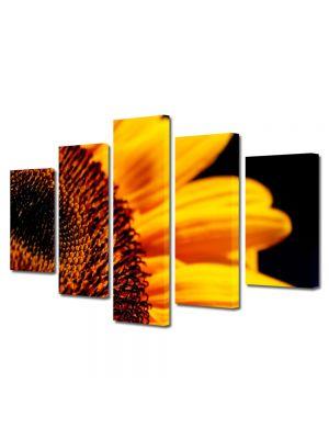 Set Tablouri Multicanvas 5 Piese Flori Florea soarelui in detaliu