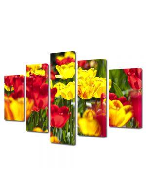 Set Tablouri Multicanvas 5 Piese Flori Flori rosii si galbene