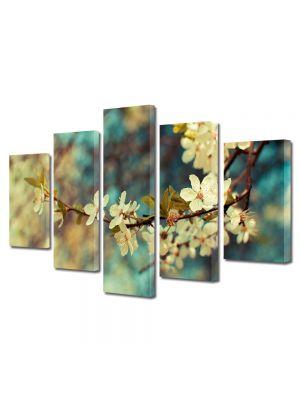 Set Tablouri Multicanvas 5 Piese Flori Crengura inflorita