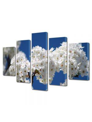 Set Tablouri Multicanvas 5 Piese Flori Flori albe de pom