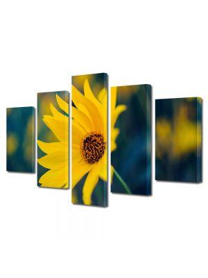 Set Tablouri Multicanvas 5 Piese Flori Floricica galbuie