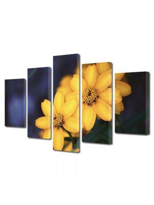 Set Tablouri Multicanvas 5 Piese Flori Floricele galbenele