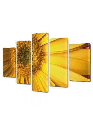 Set Tablouri Multicanvas 5 Piese Flori Galben perfect