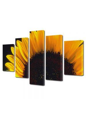 Set Tablouri Multicanvas 5 Piese Flori Floare pe camp