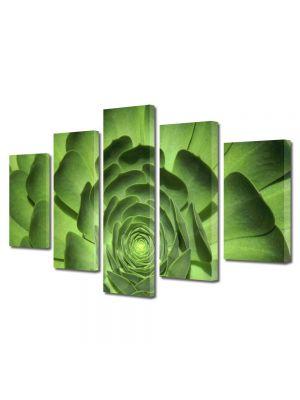 Set Tablouri Multicanvas 5 Piese Flori Floare cu petale verzi