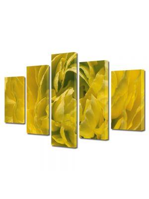 Set Tablouri Multicanvas 5 Piese Flori Petale aglomerate