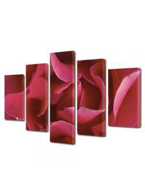 Set Tablouri Multicanvas 5 Piese Flori Petale subtirele