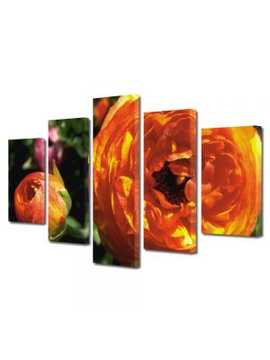Set Tablouri Multicanvas 5 Piese Flori Flori speciale