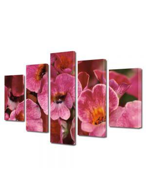 Set Tablouri Multicanvas 5 Piese Flori Flori curioase