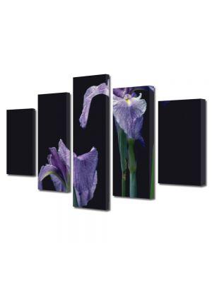 Set Tablouri Multicanvas 5 Piese Flori Doua violet
