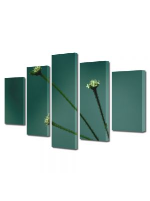 Set Tablouri Multicanvas 5 Piese Flori Trei fire