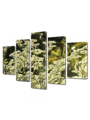 Set Tablouri Multicanvas 5 Piese Flori Pe intreg campul