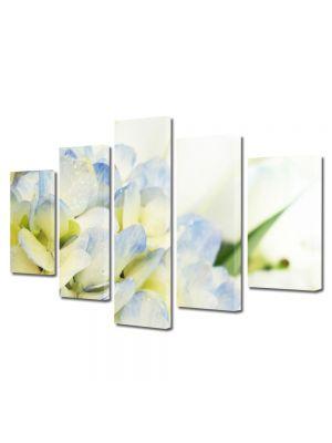 Set Tablouri Multicanvas 5 Piese Flori Lilieci albi