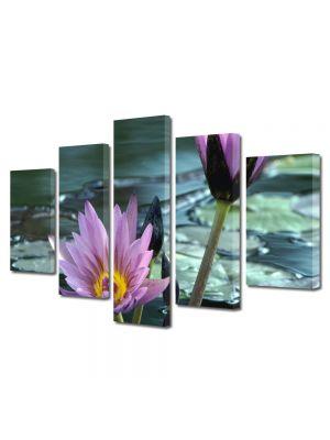 Set Tablouri Multicanvas 5 Piese Flori Flori violet de nuferi