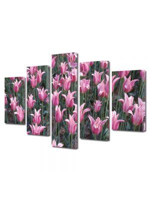 Set Tablouri Multicanvas 5 Piese Flori Flori pe camp
