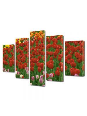 Set Tablouri Multicanvas 5 Piese Flori Coloritul florilor