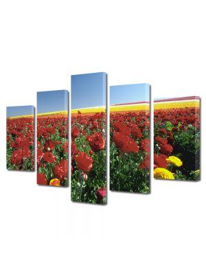 Set Tablouri Multicanvas 5 Piese Flori Camp colorat cu flori de vara