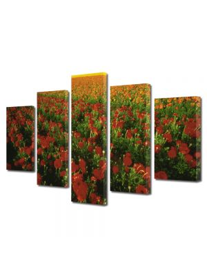 Set Tablouri Multicanvas 5 Piese Flori Plantatie de flori