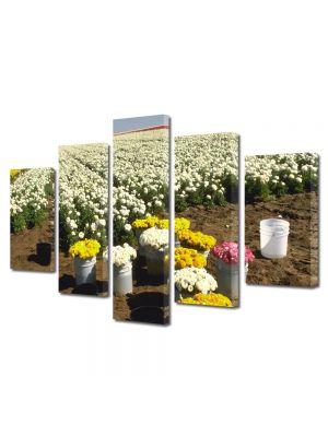 Set Tablouri Multicanvas 5 Piese Flori Randuri de flori