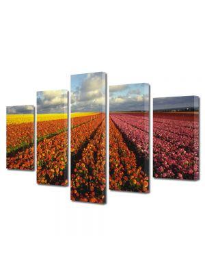 Set Tablouri Multicanvas 5 Piese Flori Camp imens de flori