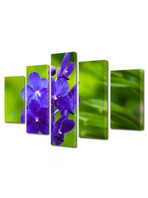 Set Tablouri Multicanvas 5 Piese Flori Orhidee albastre