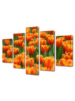 Set Tablouri Multicanvas 5 Piese Flori Lalele portocalii