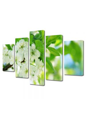 Set Tablouri Multicanvas 5 Piese Flori Flori la lumina soarelui