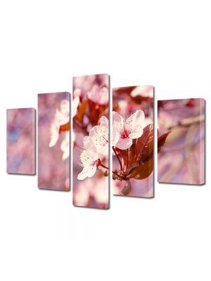 Set Tablouri Multicanvas 5 Piese Flori Proaspat inflorit