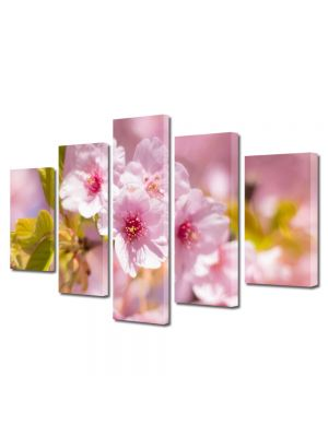 Set Tablouri Multicanvas 5 Piese Flori Parfum de copaci infloriti