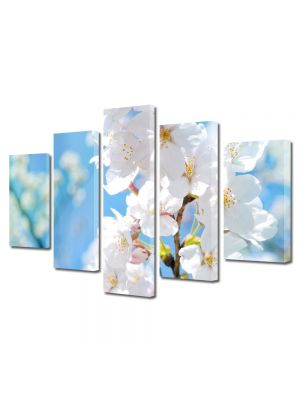 Set Tablouri Multicanvas 5 Piese Flori Parfumul florilor