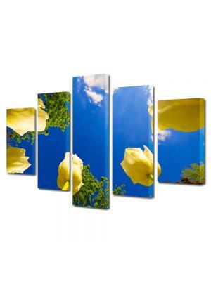 Set Tablouri Multicanvas 5 Piese Flori Lalele spre cer